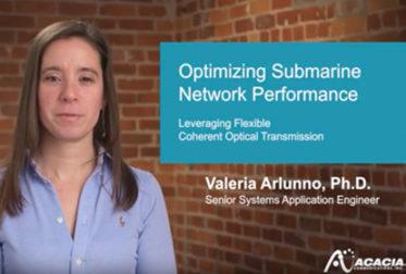 Optimizing Submarine Network Performance